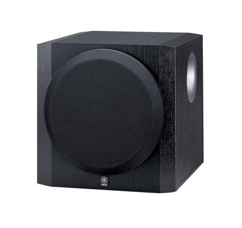 YST-SW216 100 Watt Powered Subwoofer Black