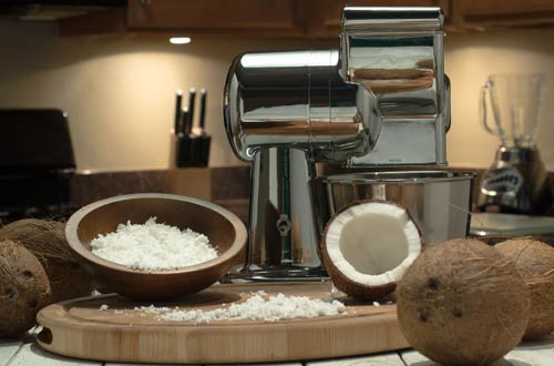 Grandma Ann's Electric Grater for Coconut