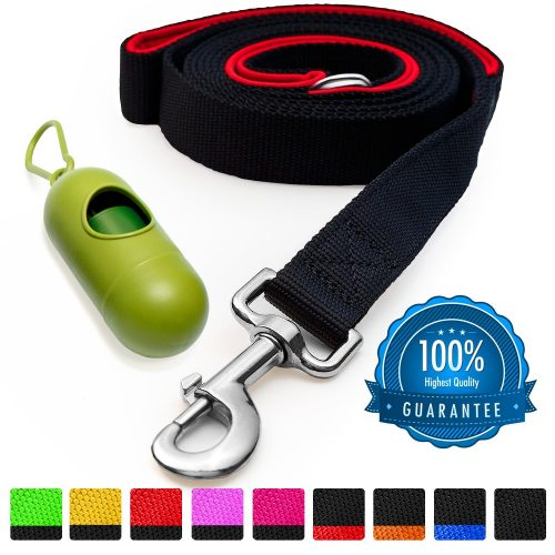 Dog Leash with Bonus FREE Waste Bag Dispenser