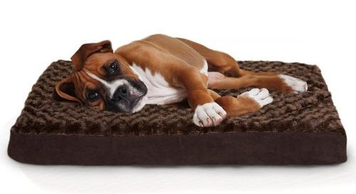 Roll over image to zoom in Furhaven Pet FurHaven Deluxe Orthopedic Pet Bed Mattress for Dogs-Dog Beds