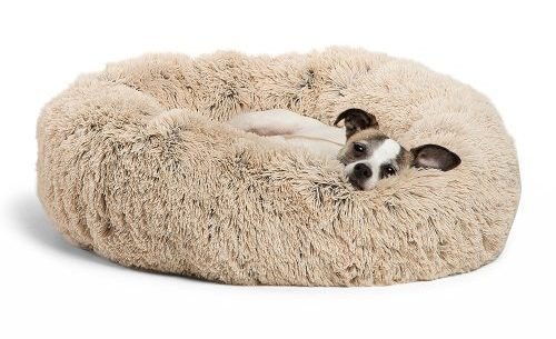 Round Donut Cat and Dog Cushion Bed