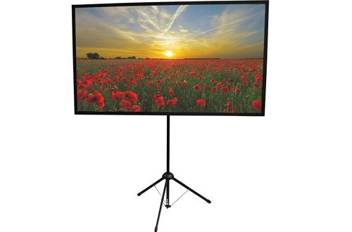 GO-80: 2-in-1 Projection Screen | 80 inch | Mounts on Tripod AND Wall | 16:9 format | 9 lbs | 2 minute setup | Includes Carrying Bag | For Mobile presentation and Home Entertainment |4K Ultra HD ready