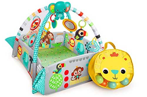 Ball Play Activity Gym