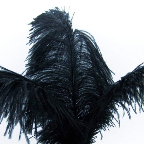 KOLIGHT 40pcs 12''~14''(30~35cm) Natural Ostrich Feathers DIY Home Wedding Party Office Decoration (Black)