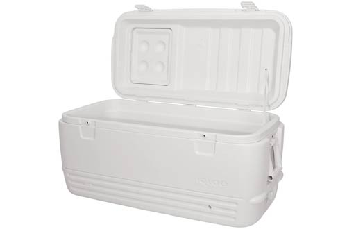 Igloo Quick Camping Coolers
