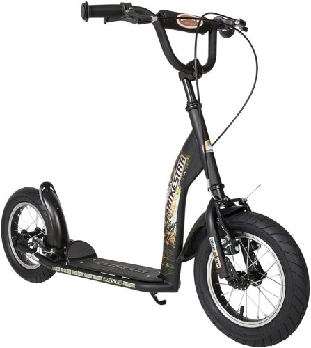Kick Scooter with Brakes